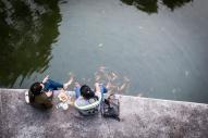 Fish in Turtle Lake